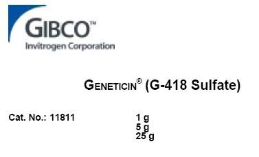 氨苄青霉素储存液(100mg/ml)