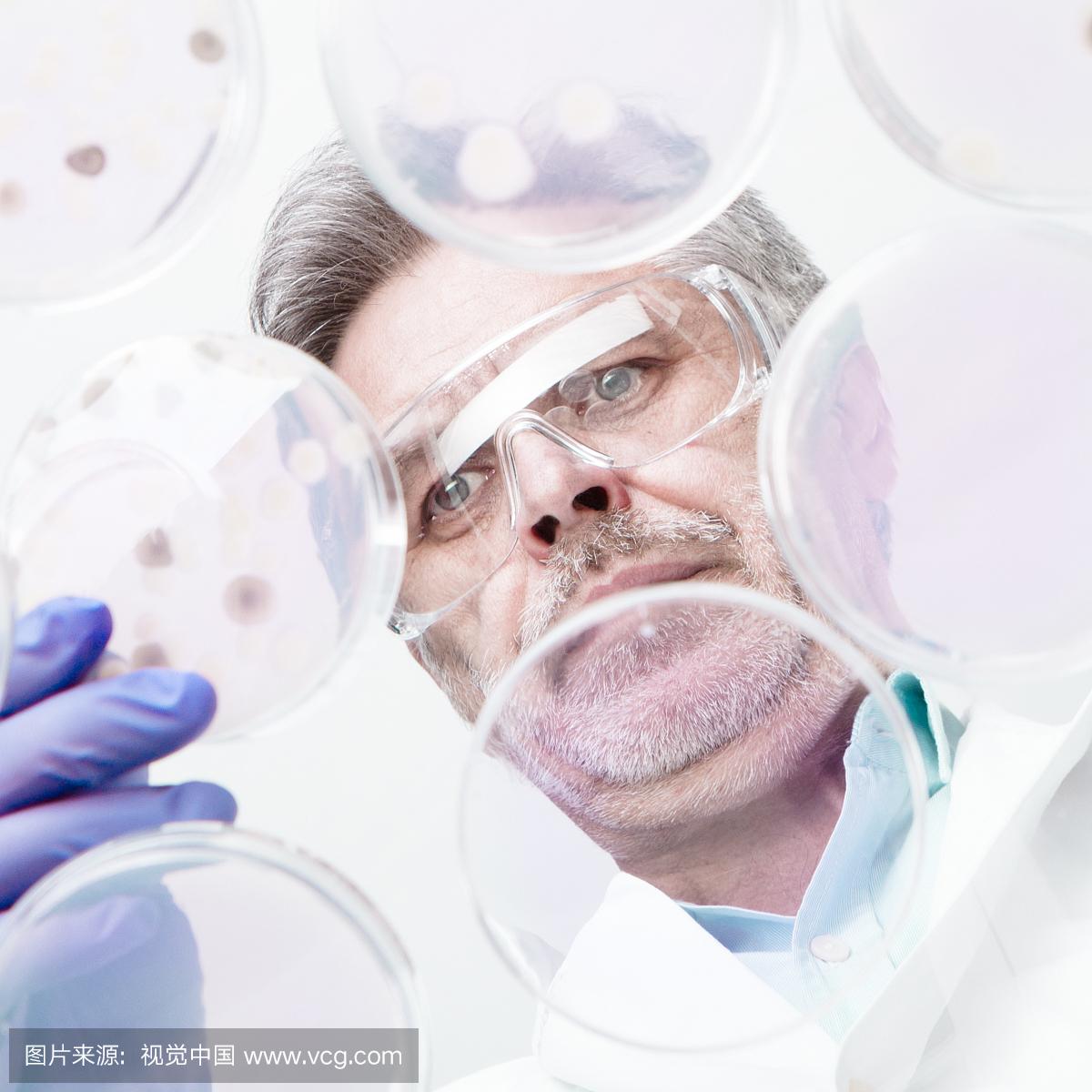 RPMI 1640细胞培养基 细胞培养级 双蒸水配制,100nm无菌过滤