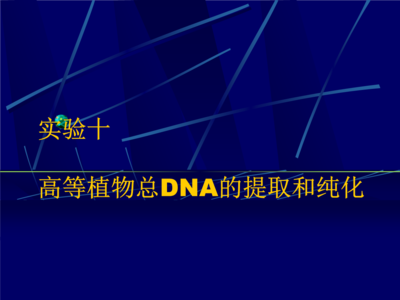 粪便DNA提取试剂盒(柱型)