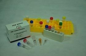 【正品直销,售后保障】(PCR扩增体系buffer)2 × Phanta Max Buffer