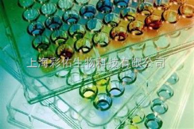 1-Sep ELISA kit 酶联免疫试剂盒