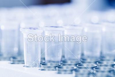 Pfu DNA Polymerase 2U/μl 200U / 2U/μl 1000U (10× Pfu Buffer含有Mg2+)