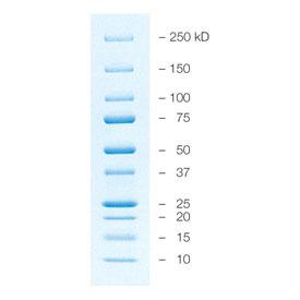乙内酰脲-4,5-13C2, 15N1189495-02-0标准品对照品