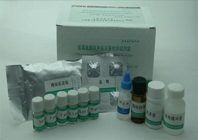 丙型肝炎病毒6型RT-PCR试剂盒