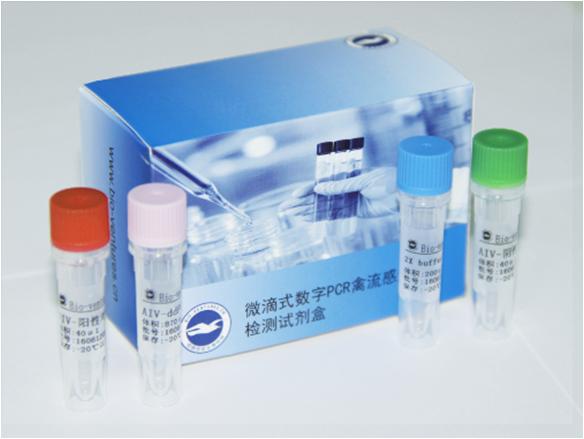 驽巴贝斯虫PCR试剂盒