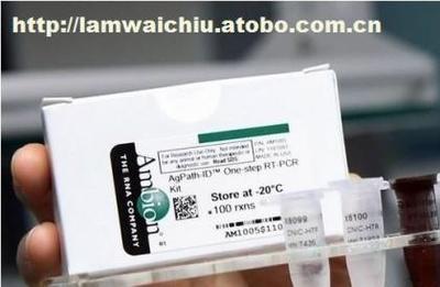 莱氏无胆甾原体PCR试剂盒