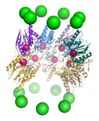 【正品直销,售后保障】(用于体外DNA切割和基因组改造 Cas9)Cas9 Nuclease