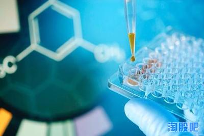 马传染性贫血病毒qPCR检测试剂盒