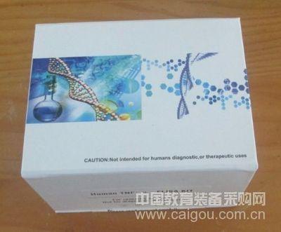 猪蓝耳病病毒PCR试剂盒