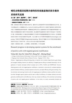 SRE luciferase reporter plasmid 荧光素酶报告基因(报告基因质粒)