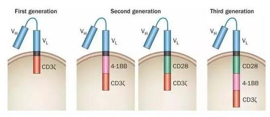 血蓝蛋白 (血清素,来源于软体动物)