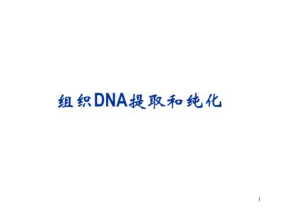 试剂级80-120目柱层层析硅胶提纯分离纯化用