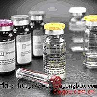 TSH抗原 纯品