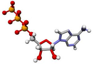 普伐他汀钠盐标准品