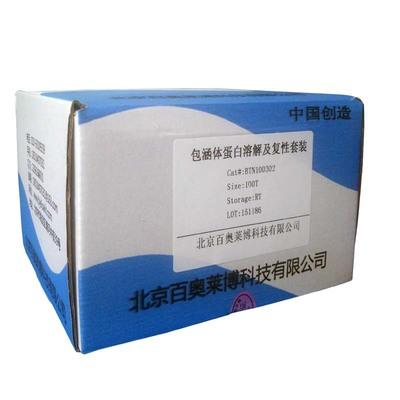 PCR-Script? Cam Cloning Kit, 25 rxn
