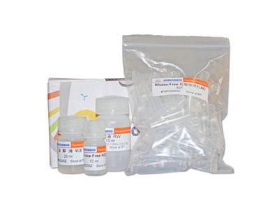 克必隆eTS超敏PCR法cDNA合成试剂盒