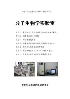 High Sieving Agarose 翊圣高分辨率琼脂糖(PCR级)