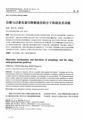 Anti-DBR1抗体