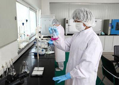 流感嗜血杆菌诊断血清