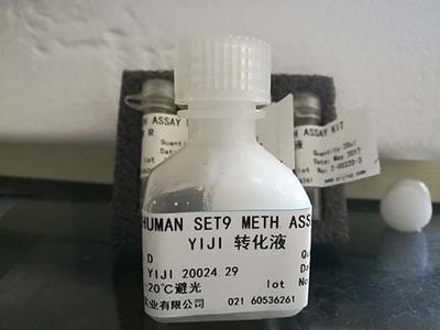 LifeXtend HRP conjugate stabilizer,酶结合物稳定剂