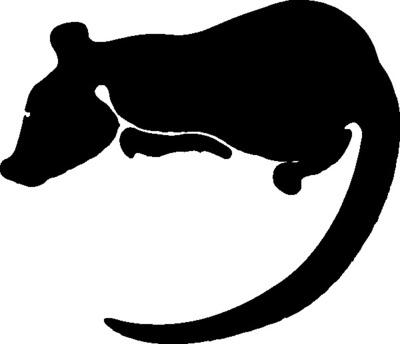 大鼠白介素-1b (rat IL-1b)