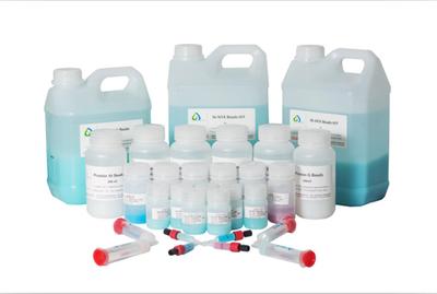 肽 纯化服务