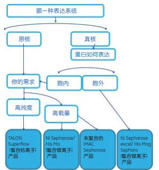 ProteinG 纯化树脂(50%浆料)