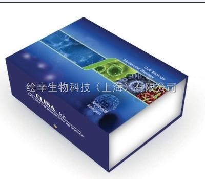 Prostaglandin F2A