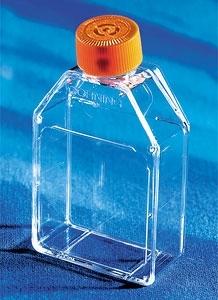 25cm2密闭/透气盖易用培养瓶