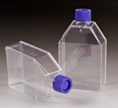 25cm2 过滤盖易用培养瓶
