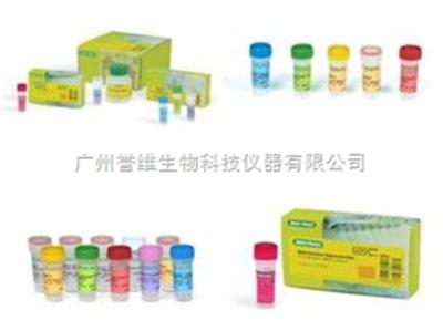 【正品直销,售后保障】(预混液形式的两步法RT-PCR/qPCR首选试剂(包含基因组去除模块))HiScript II Q RT SuperMix for qPCR(+g DNA wiper)