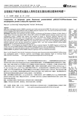 pEGFP N1