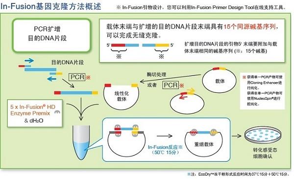 O-[2-(Boc-氨基)乙基]聚乙二醇