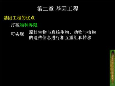 pLVX-Tet 3G载体 病毒克隆载体