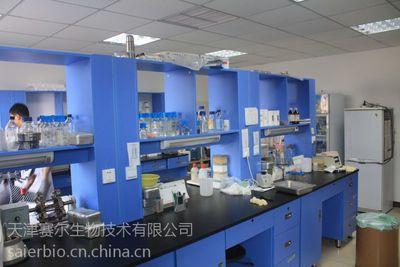 膜片钳技术服务