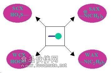SOURCE高速低反压介质(填料)离子交换