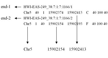 基因同源性分析