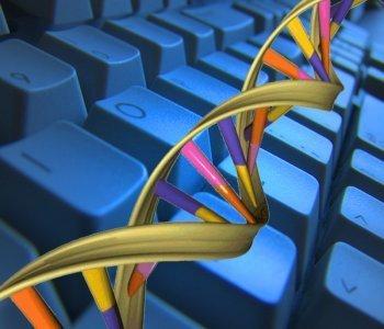 Pathway富集分析-基因芯片数据高级信息分析服务