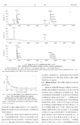 抗体亲和预装柱 HiTrap rProtein A FF 5ml×1
