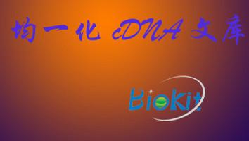 SMYD1; BOP; KMT3D; ZMYND18; ZMYND22