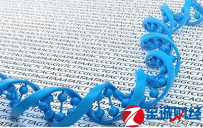 【正品直销,售后保障】VAHTSTM DNA Adapters set3-set6 for Illumina Illumina高通量测序平台文库构建专业配套试剂盒