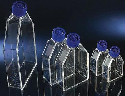 50ml,25c㎡ 透气盖细胞培养瓶,TC处理,PS,无热源无菌