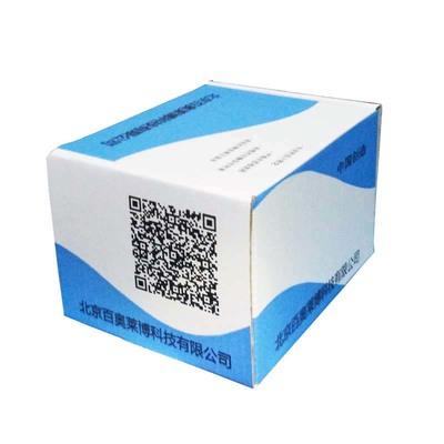 StrataClone Blint PCR Cloning Kits (20 Rxn)