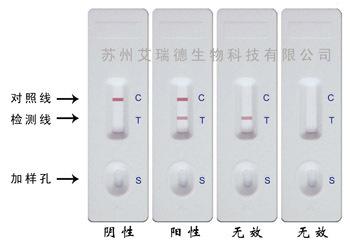 四甲基偶氮唑盐比色法(mtt方法),