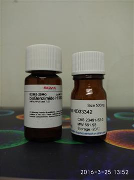 功能基因组学与分子生物学试剂 蛋白标记与检测
