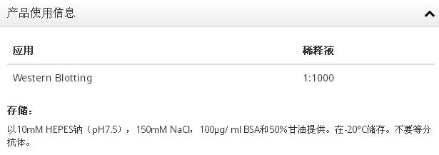 Anti-C1orf229抗体
