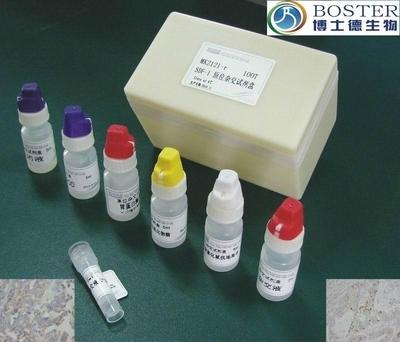 8q Subtelomere(R6G) FISH Probe