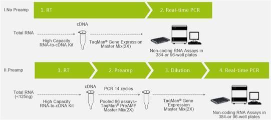 MicroMAX ASAP miRNA标记