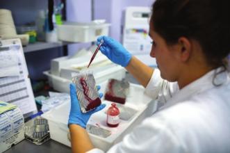 病毒核酸提取试剂盒II