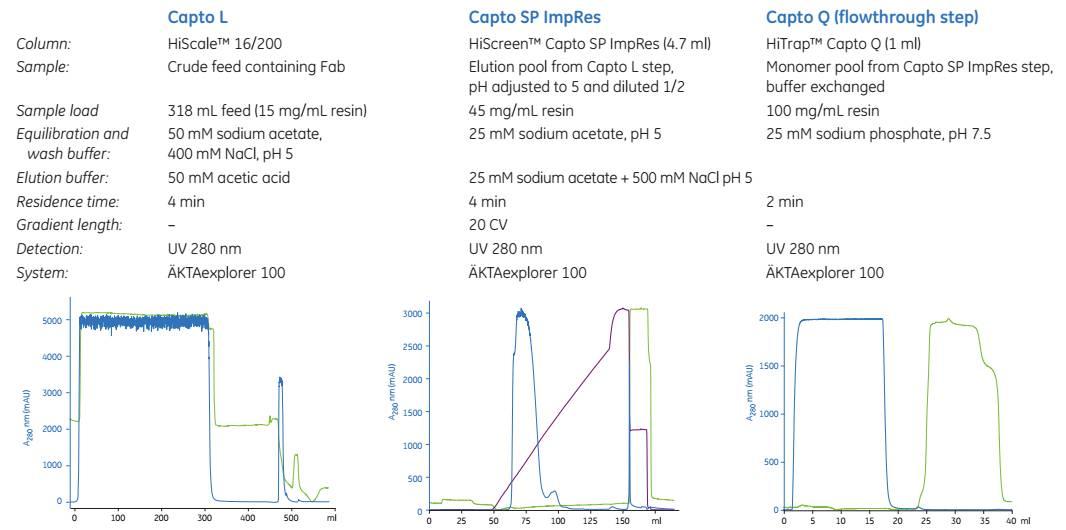 重组人NT-proBNP蛋白